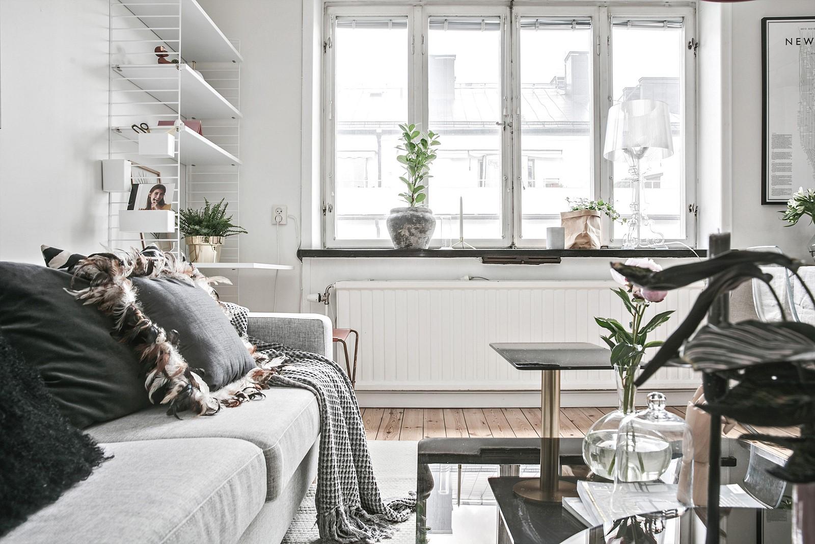 гостиная полки окно подоконник диван столик цветок