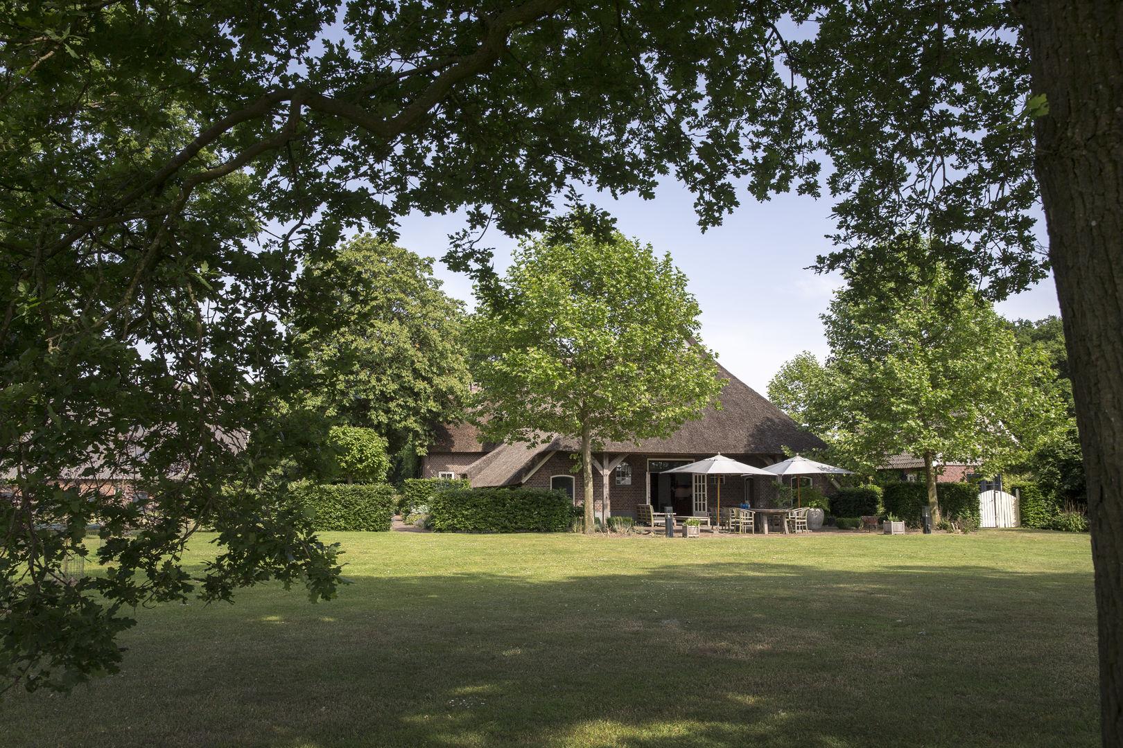 участок загородного дома газон деревья