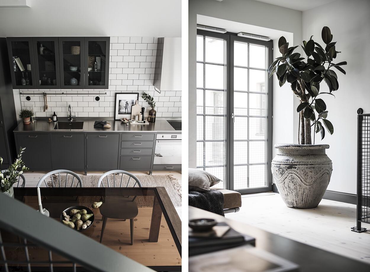 кухня сварные стеклянные двери комнатное дерево кашпо