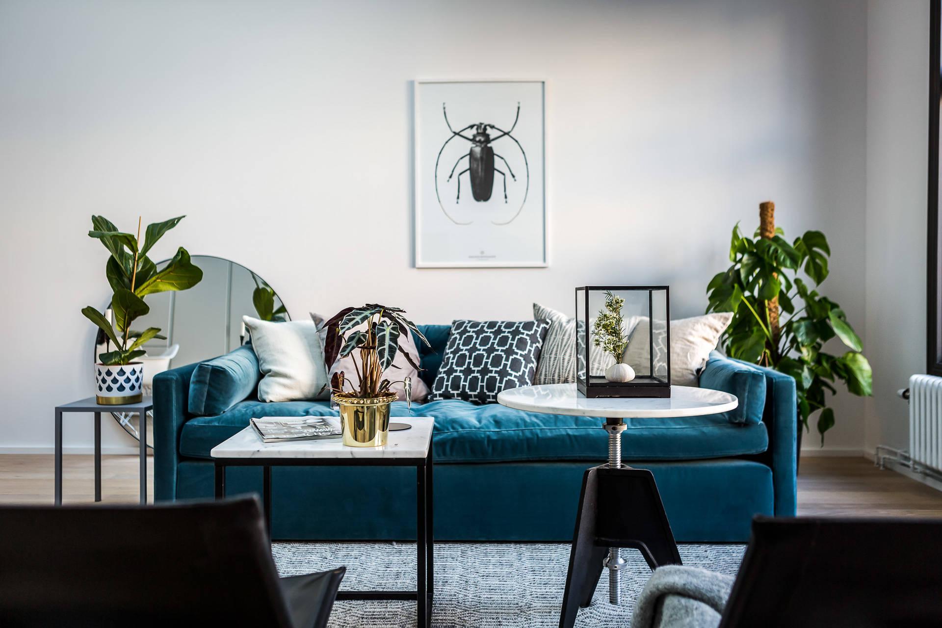 гостиная придиванный столик журнальный столик комнатные растения