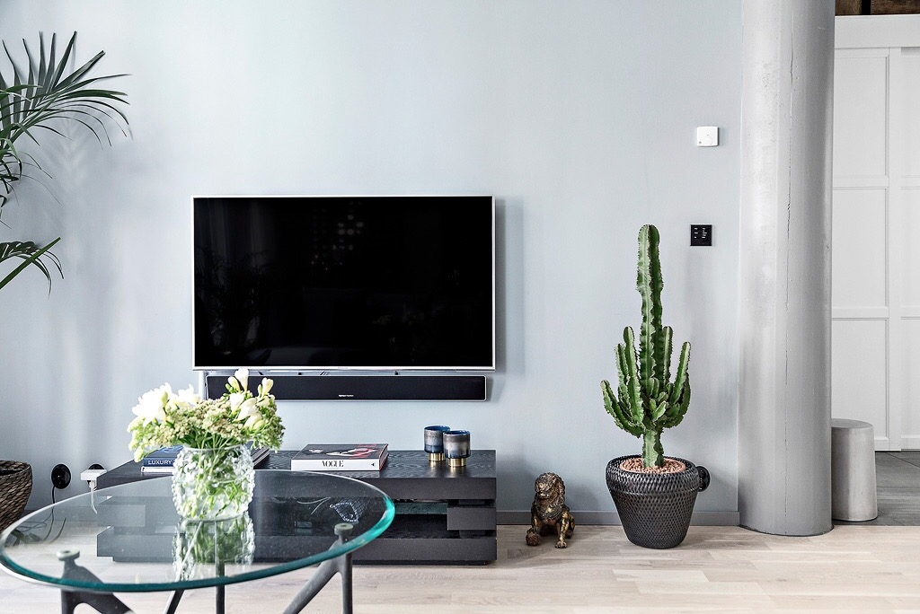 гостиная телевизор комнатные растения круглый столик ваза