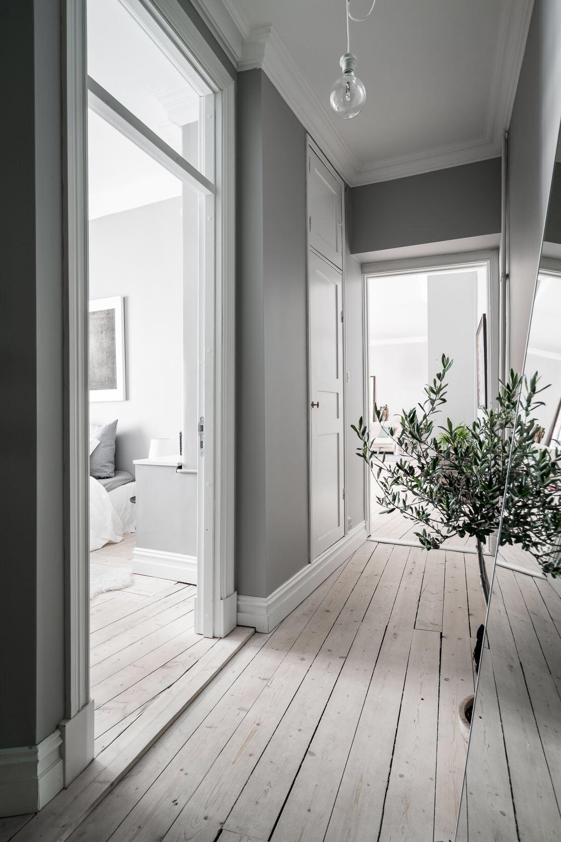 коридор двери фрамуга деревянный пол напольное зеркало комнатное дерево белый плинтус