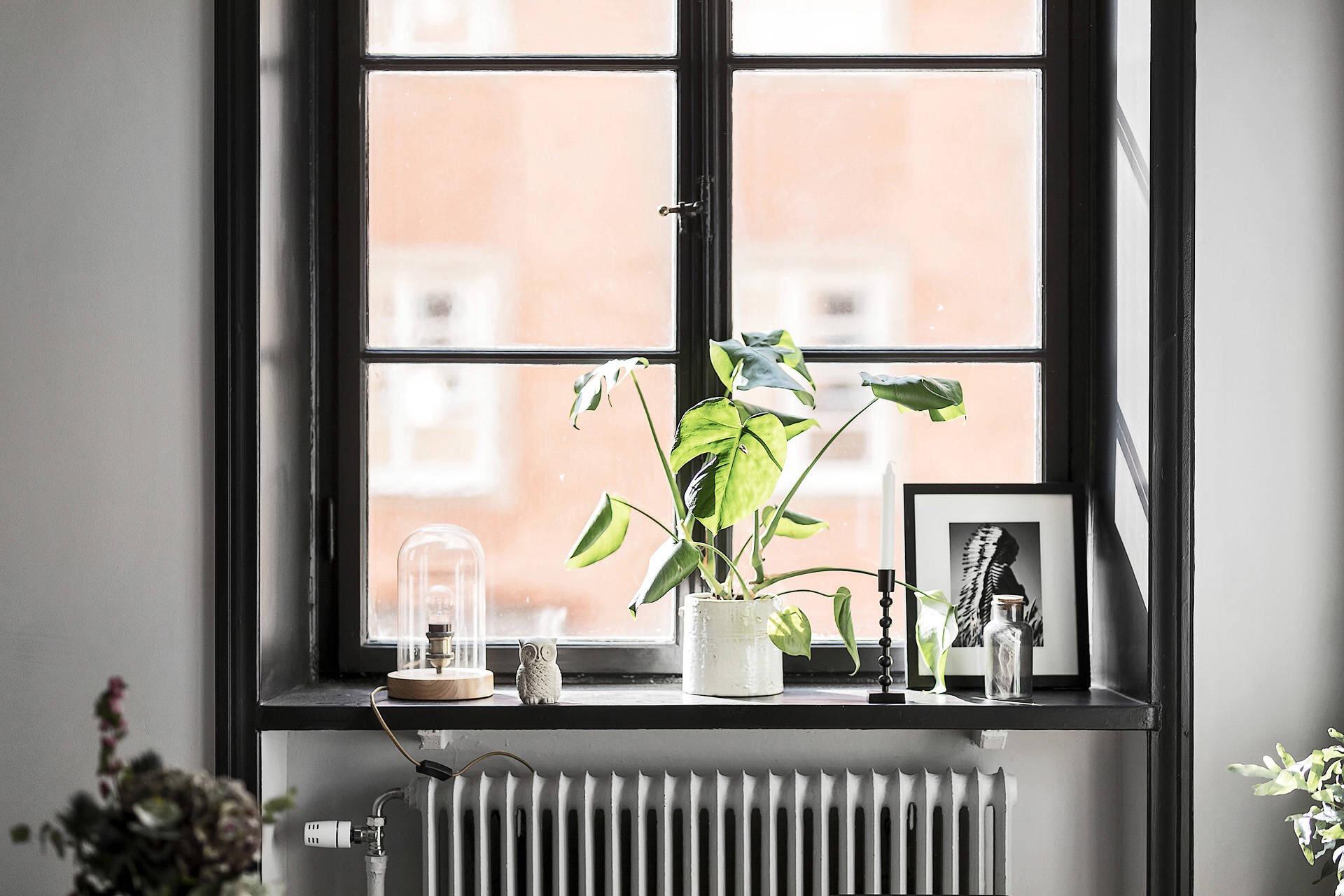 окно темные рамы подоконник цветок кашпо декор радиатор отопления