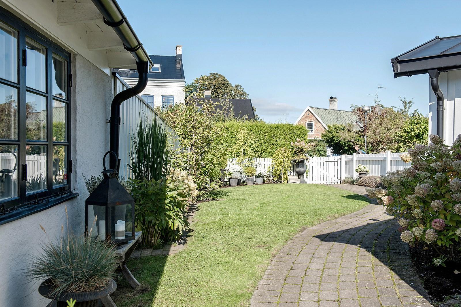 участок загородного дома газон кустарники клумбы отмостка дорожки забор