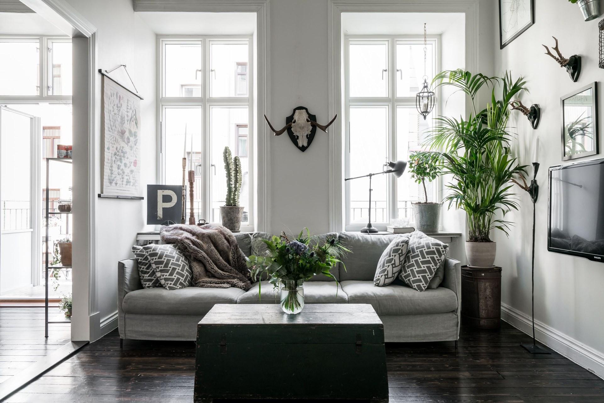 гостиная серый диван телевизор окно наличники подоконник комнатное дерево