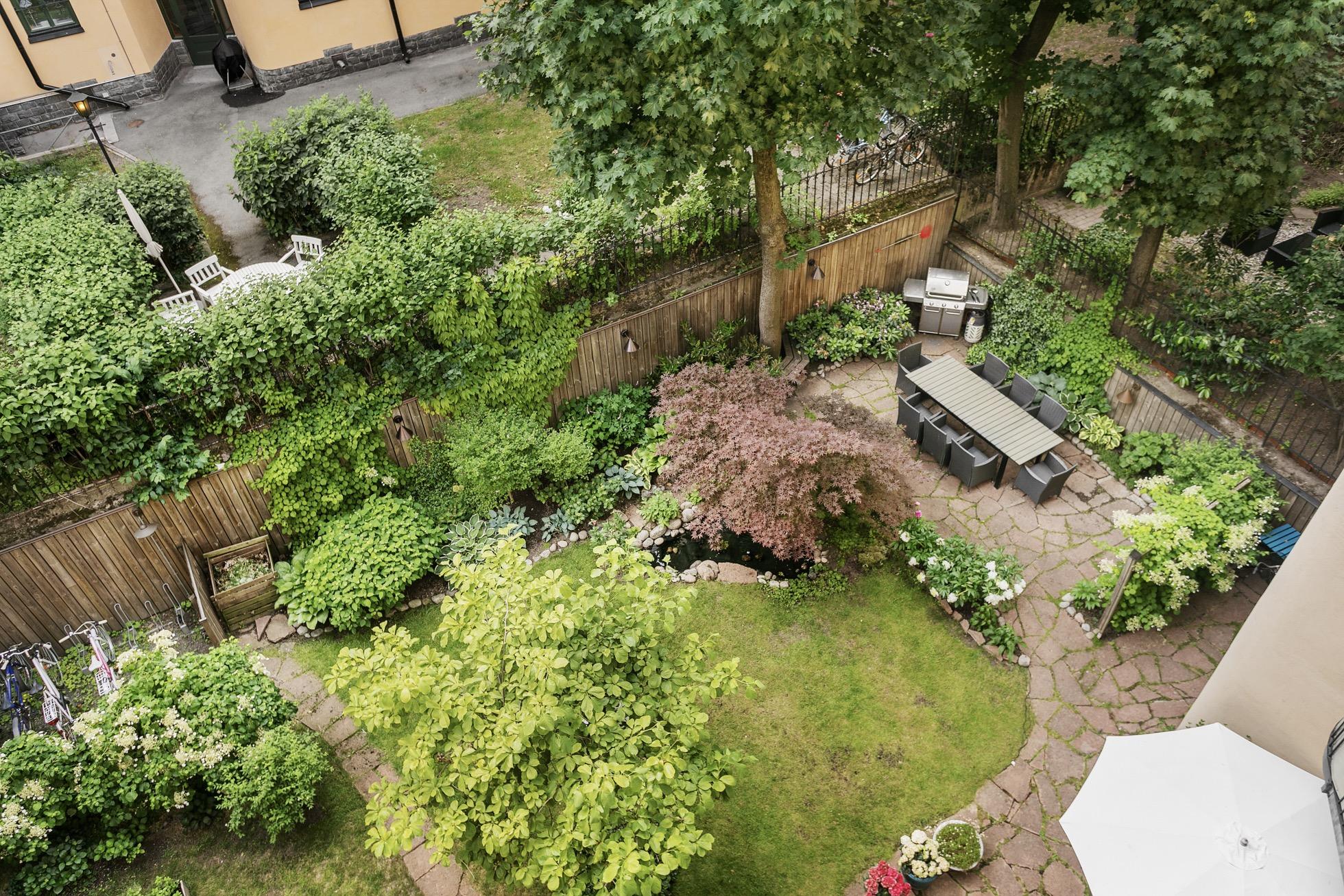 двор сад газон гриль
