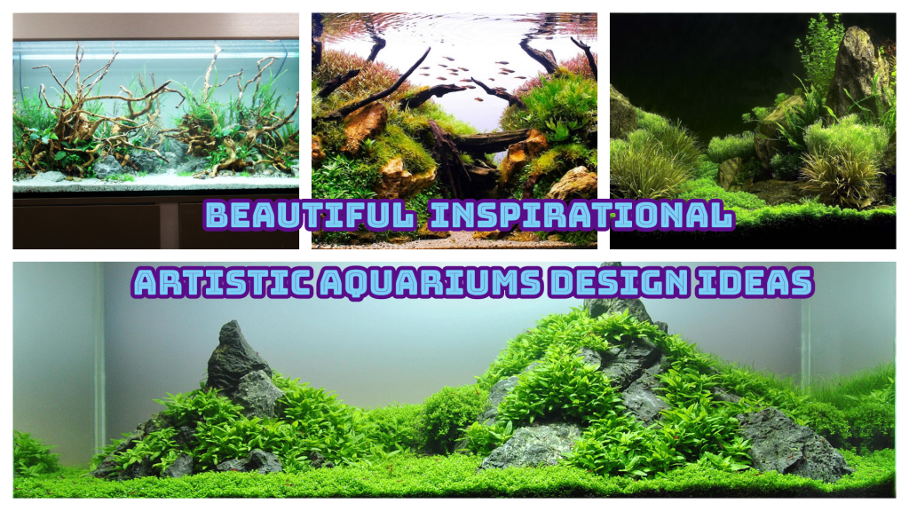 artistic aquariums