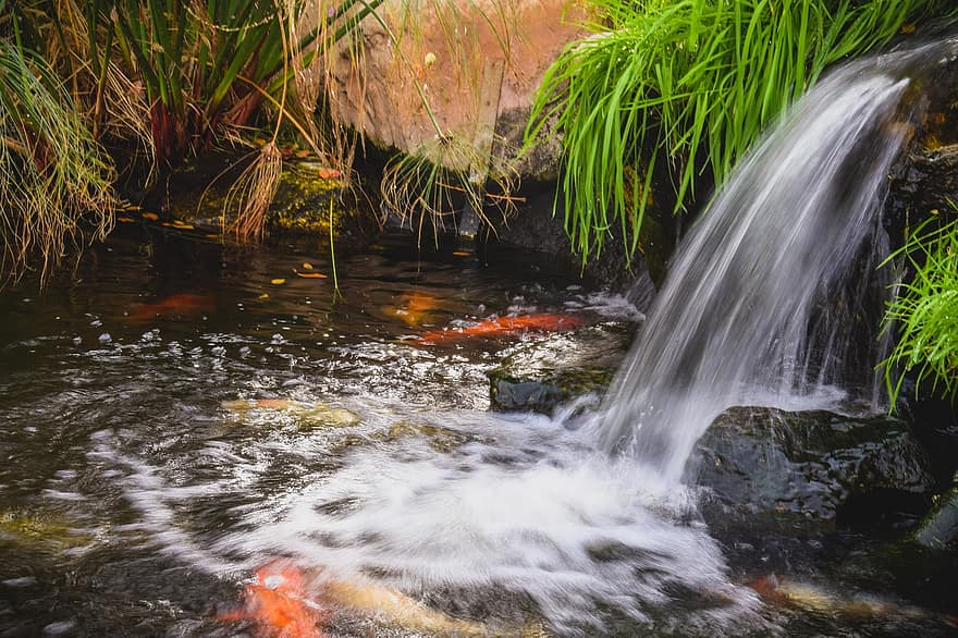 stream water pond waterfall creek nature flowing scenery