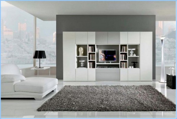 Have The Living Room Storage Ideas