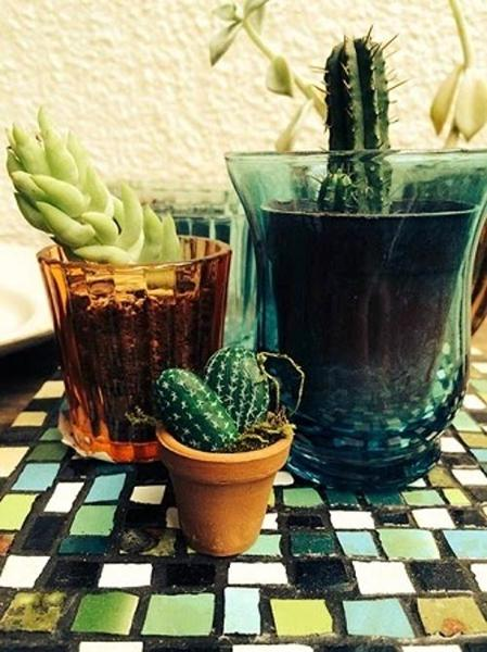 Home Decorating With Cacti And Handmade Cactus Home