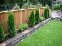 02 Affordable Backyard Privacy Fence Ideas