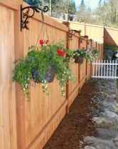 71 Affordable Backyard Privacy Fence Ideas