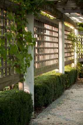 81 Affordable Backyard Privacy Fence Ideas