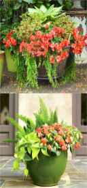 02 Fresh and Easy Summer Container Garden Flowers Ideas
