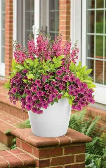 08 Fresh and Easy Summer Container Garden Flowers Ideas