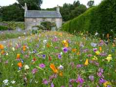 20 Beautiful Cottage Garden Ideas to Create Perfect Spot