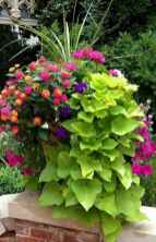 51 Fresh and Easy Summer Container Garden Flowers Ideas