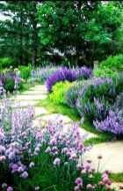 71 Fresh and Beautiful Front Yard Flowers Garden Landscaping Ideas
