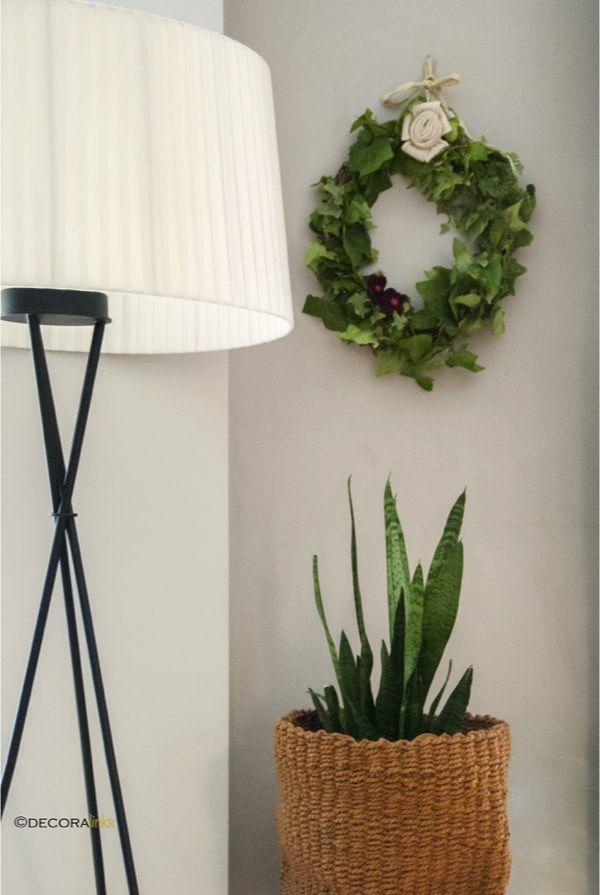 hedera garland decorating the wall