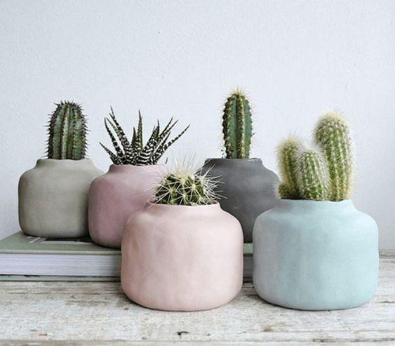 decoralinks | cactus