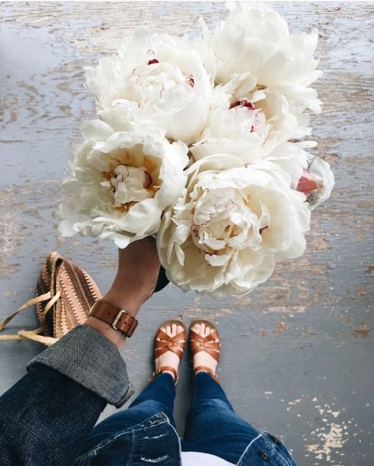 decoralinks | regala flores - peony