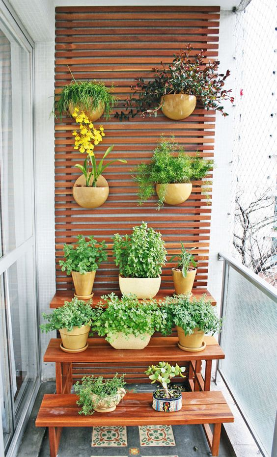 plantas para varanda de apartamento 16