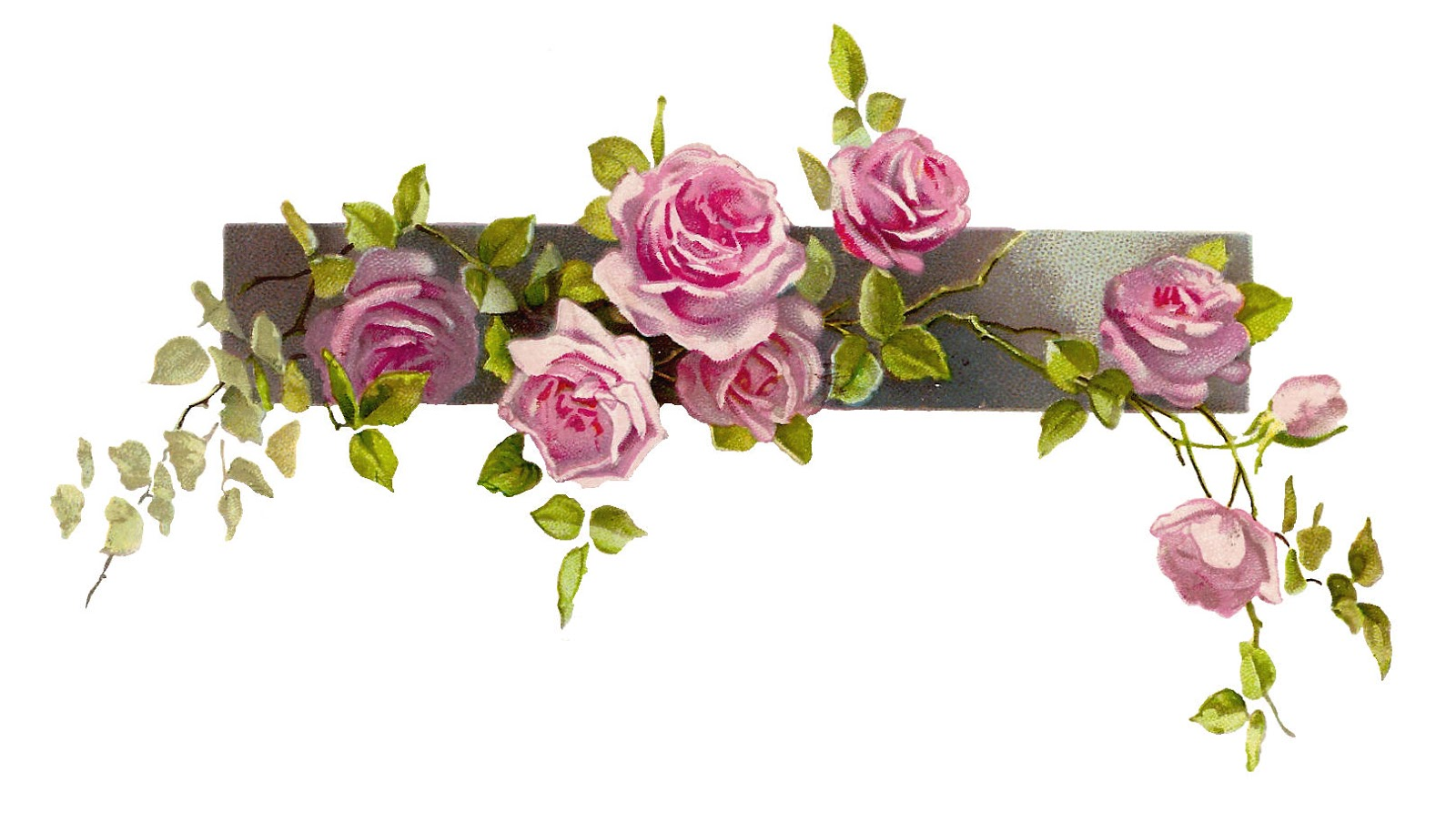 5 Secrets: How To Use Flower Wallpaper Borders To Create A