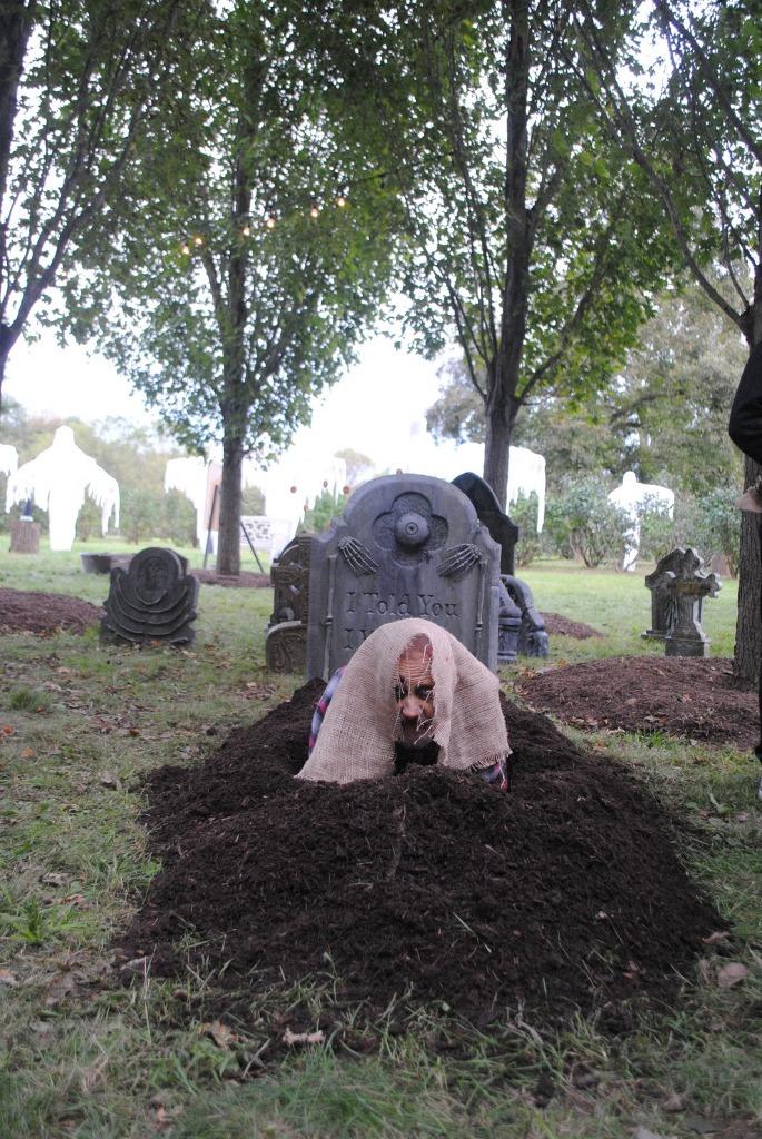 Martha Stewart Halloween Haunted House