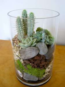 BEST SUCCULENT GARDEN DESIGN IDEAS 130