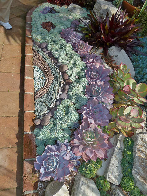 BEST SUCCULENT GARDEN DESIGN IDEAS 134