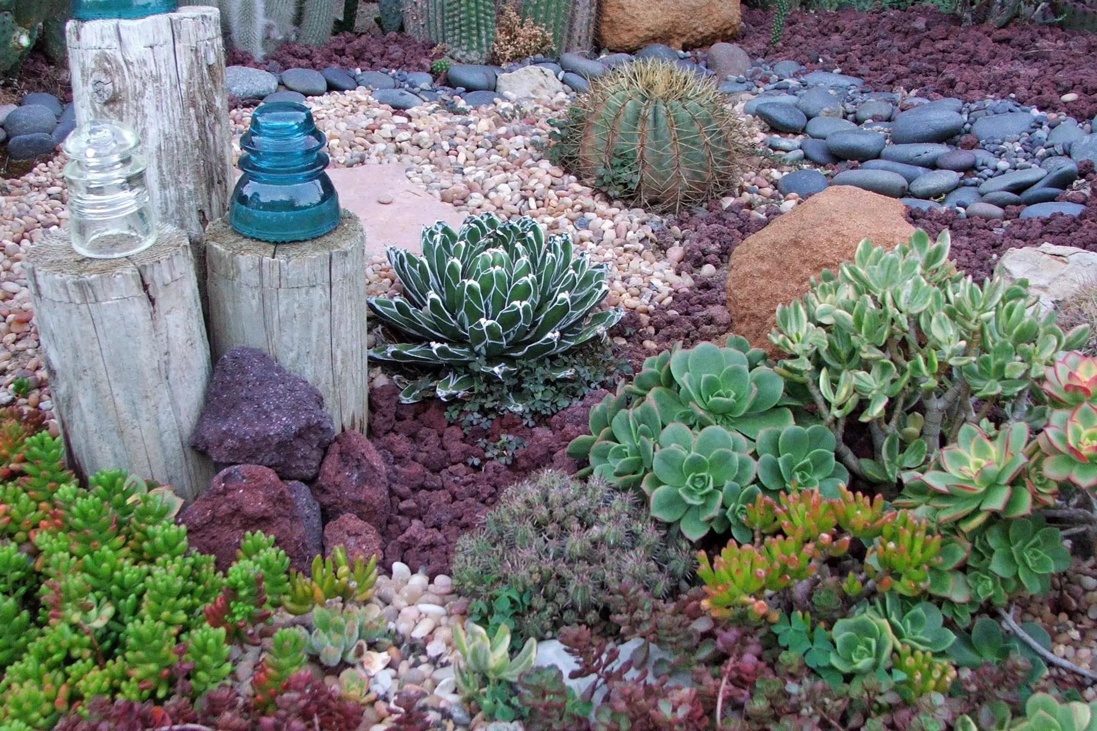 Best Succulent Garden Design Ideas 16 Decoratoo