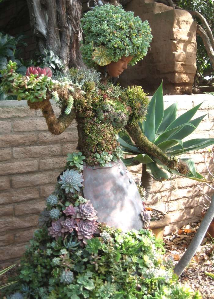BEST SUCCULENT GARDEN DESIGN IDEAS 47