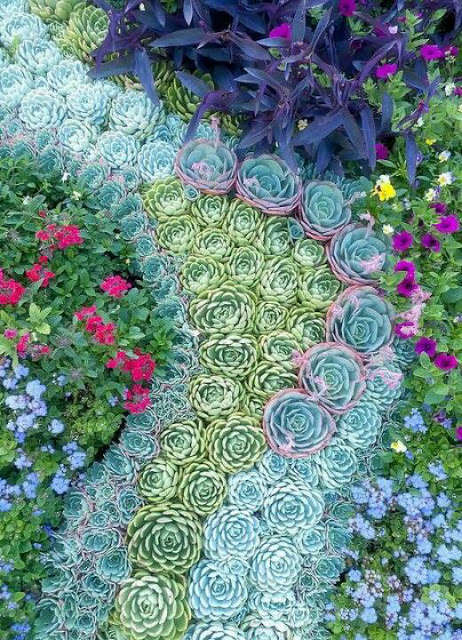 BEST SUCCULENT GARDEN DESIGN IDEAS 61