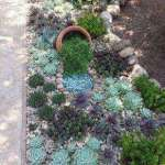 BEST SUCCULENT GARDEN DESIGN IDEAS 71