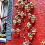 BEST SUCCULENT GARDEN DESIGN IDEAS 79