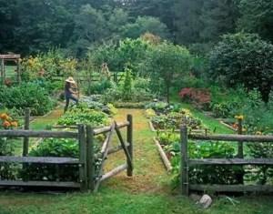 Design For Backyard Landscaping 33