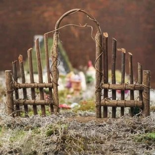 Magical And Best Plants DIY Fairy Garden Inspirations 15