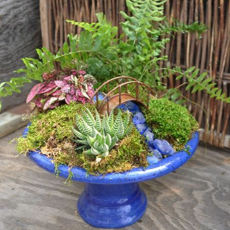 Magical And Best Plants DIY Fairy Garden Inspirations 57