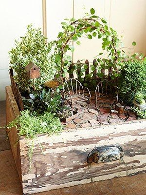Magical And Best Plants DIY Fairy Garden Inspirations 93