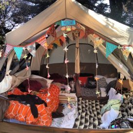 Stunning Images About RV Camping Ideas, Hacks, And DIY 18