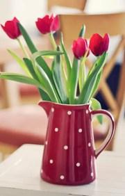 Tulips In Vase 12