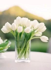 Tulips In Vase 16