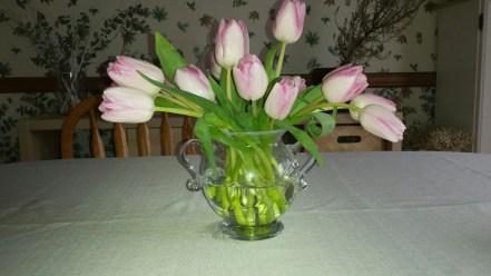 Tulips In Vase 22