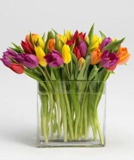 Tulips In Vase 3