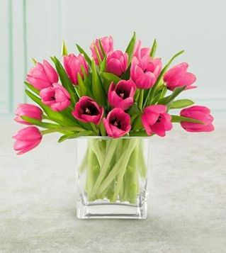 Tulips In Vase 45