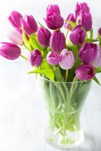 Tulips In Vase 57