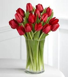 Tulips In Vase 65