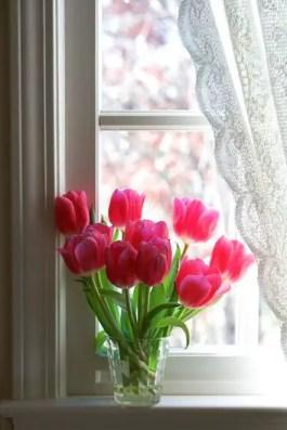 Tulips In Vase 79