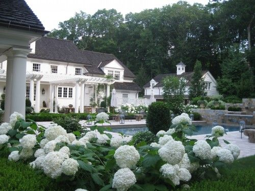 Beautiful Backyards With Pools 19