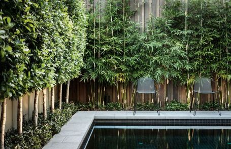 Beautiful Backyards With Pools 21